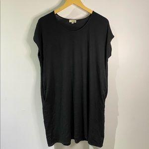 Aritzia t-shirt dress